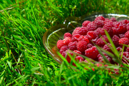 ripe raspberry in a glass dish on a green grass photo