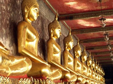 row of golden buddha statue,Thailand photo