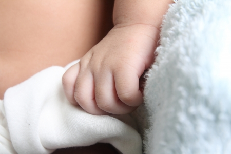 infant hand: baby infant hand Stock Photo