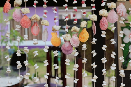 Curtain of sea shells for decoration