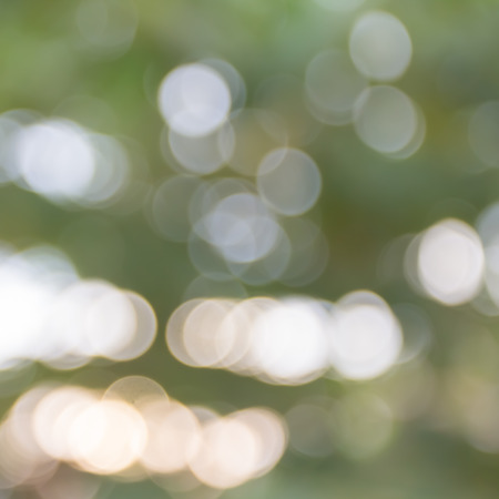 nature abstraite: Abstract nature bokeh background Banque d'images