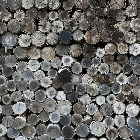 timber: stacked timber logs as background. Stock Photo