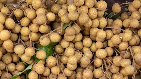 longan fruit on the market. close up details of longan fruit or kelengkeng fruit.