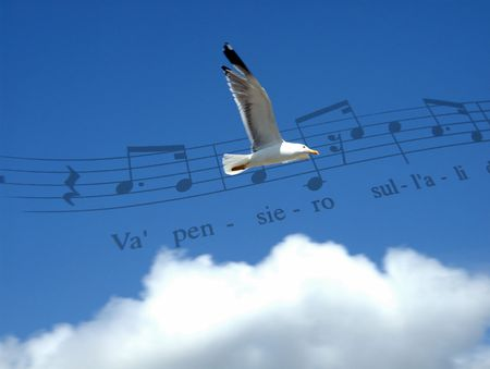Fly with the music Stock Photo