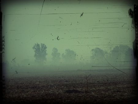 Background useful for halloween projects or creepy landscapes photo