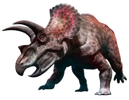 トリケラトプスの 3 D 図