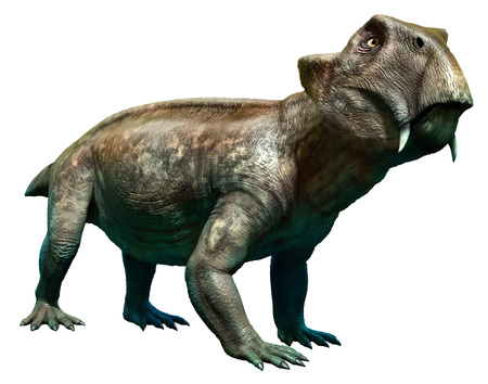 Lystrosaurus Stock Photo