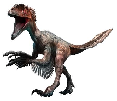 feathered: Deinonychus
