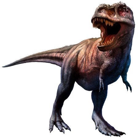 Tyrannosaurus  Stockfoto