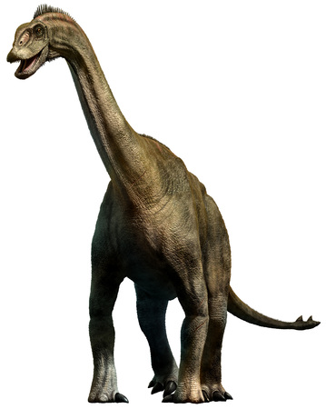 Shunosaurus Stock Photo