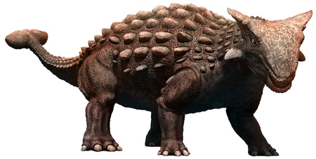 Ankylosaurus Reklamní fotografie