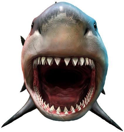 開いている口の中の図を持つサメ