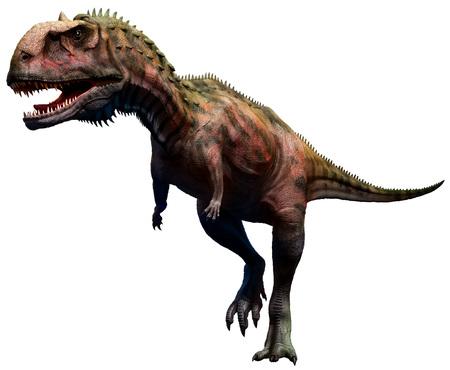 マジュンガサウルス 写真素材