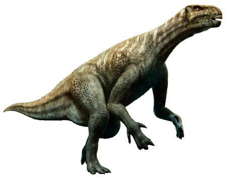 Iguanodon illustration Reklamní fotografie