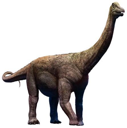 Saltasaurus 図 写真素材