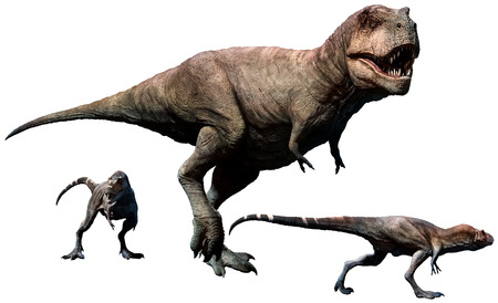 Tyrannosaurus rex female with young