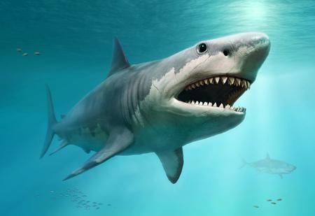 Illustration 3D de scène Megalodon