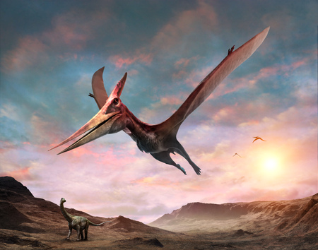 Pteranodon scene 3D illustration