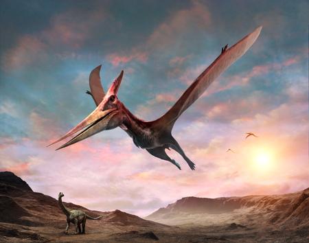 Pteranodon scene 3D illustration Stock Photo