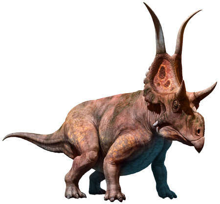 Diabloceratops 3D illustration
