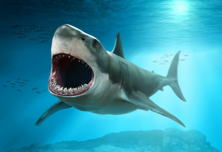 Great white shark scene 3D illustration