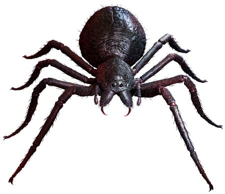 Giant Spider top view 3D illustration