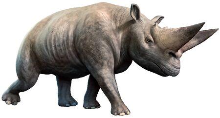 Arsinoitherium from the Eocene era 3D illustration 写真素材