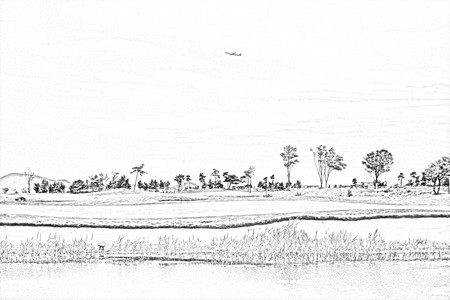 Pencil drawing of airplane flight on the golf course green.