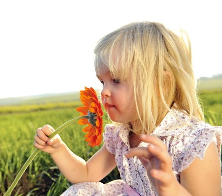 smell: Adorable little girl smells the wild flowers in the meadow