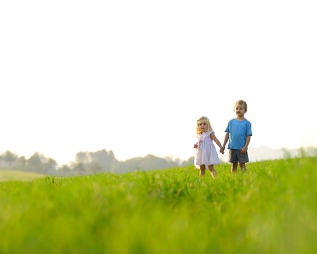 sister: Brother and sister hold hands in the meadow, healthy happy children, copyspace provided