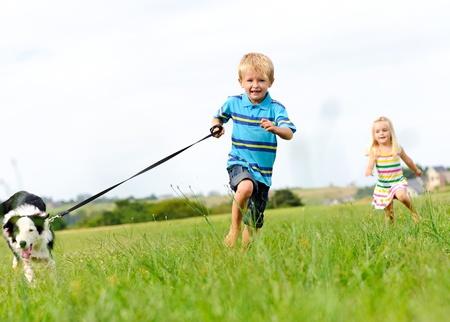 femme et chien: Jeune gar�on s'ex�cute dans un champ vert avec son nouvel animal de compagnie avec sa s?ur � la suite derri�re