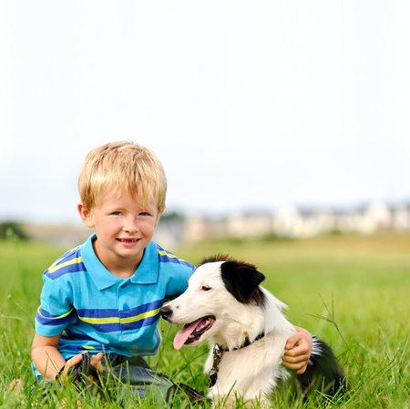 border collie puppy: A young child in a field with his pet dog  Stock Photo
