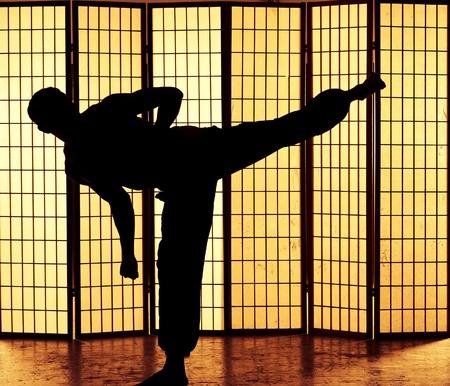 Man practising a martial art kung fu kick photo