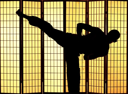 Man practising a martial art kung fu kick photo