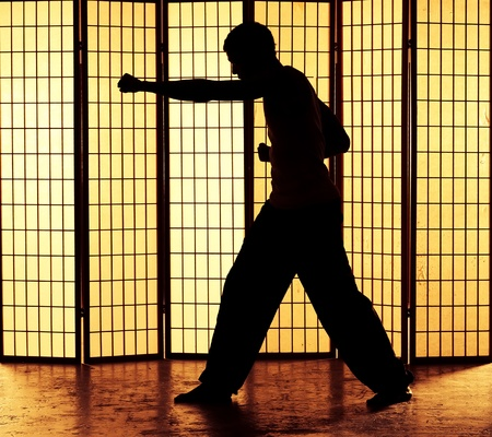 Man punching in a kung fu martial art style photo