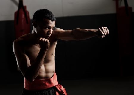 kung fu: dramatic lighting on a martial arts fighter punching in the gym