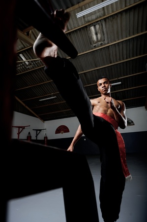 dojo: Martial arts training in Wing Chun Kung Fu style on a wooden dummy in the training gym or dojo