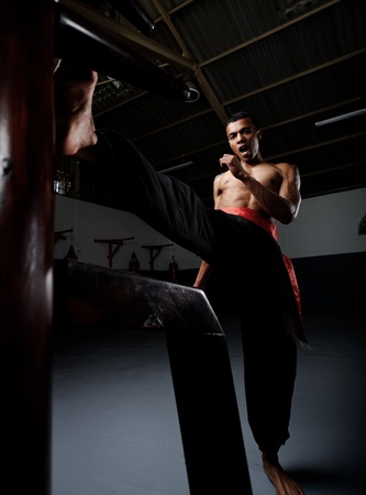 chun: Martial arts training in Wing Chun Kung Fu style on a wooden dummy in the training gym or dojo