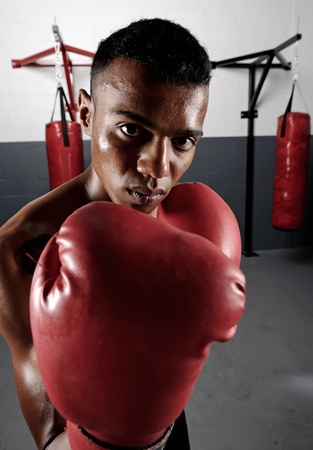 boxing equipment: portrait of a confident young boxer in the gym Stock Photo