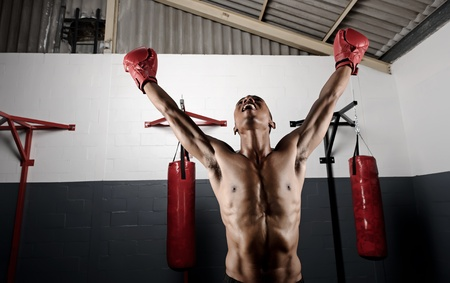 victorious boxer holds his gloves up high in celebration photo