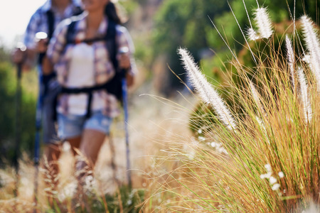 A couple walking along a hiking trail with selective focus on wilderness plantation photo