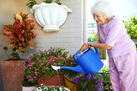 Smiling retired woman watering her plants flowers garden photo