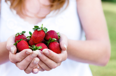 female hands: Woman in white dress holding in hands a bunch of freshly picked juicy red strawberries,  a healthy outdoor lifestyle concept Stock Photo