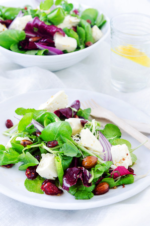 meal: Healthy mix green salad with cranberry, almonds and feta for a gourmet light meal lunch dinner appetiser