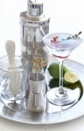 martini shaker: Cocktail making tools accessories and a chilled martini with pomegranate seeds and thyme sprig