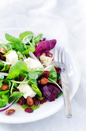 lunch meal: Delicious gourmet salad with cranberry, almonds and feta for a gourmet light meal lunch dinner appetiser
