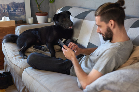 topknot: Pet owner hanging out with his dog on the couch sofa, while surfing the internet on his tablet device Stock Photo