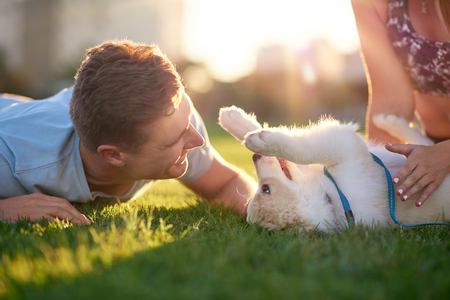 Man playing with puppy on grass with girlfriend, pet bonding best friend healthy outdoor lifestyle Stok Fotoğraf - 80991731
