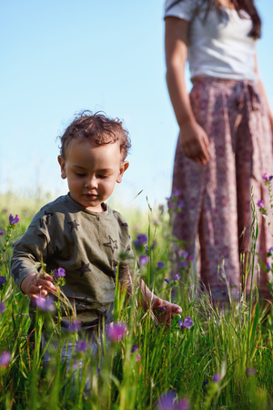 Young curious boy looking at wild flowers in a field, mother looking on in the background Banco de Imagens