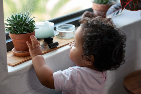 Curious young child touching a pot plant on window sill, inquisitive learning childhood development Banco de Imagens